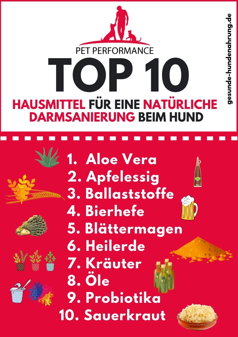 TOP 10 der natürlichen Hausmittel für eine Darmsanierung bein Hund
